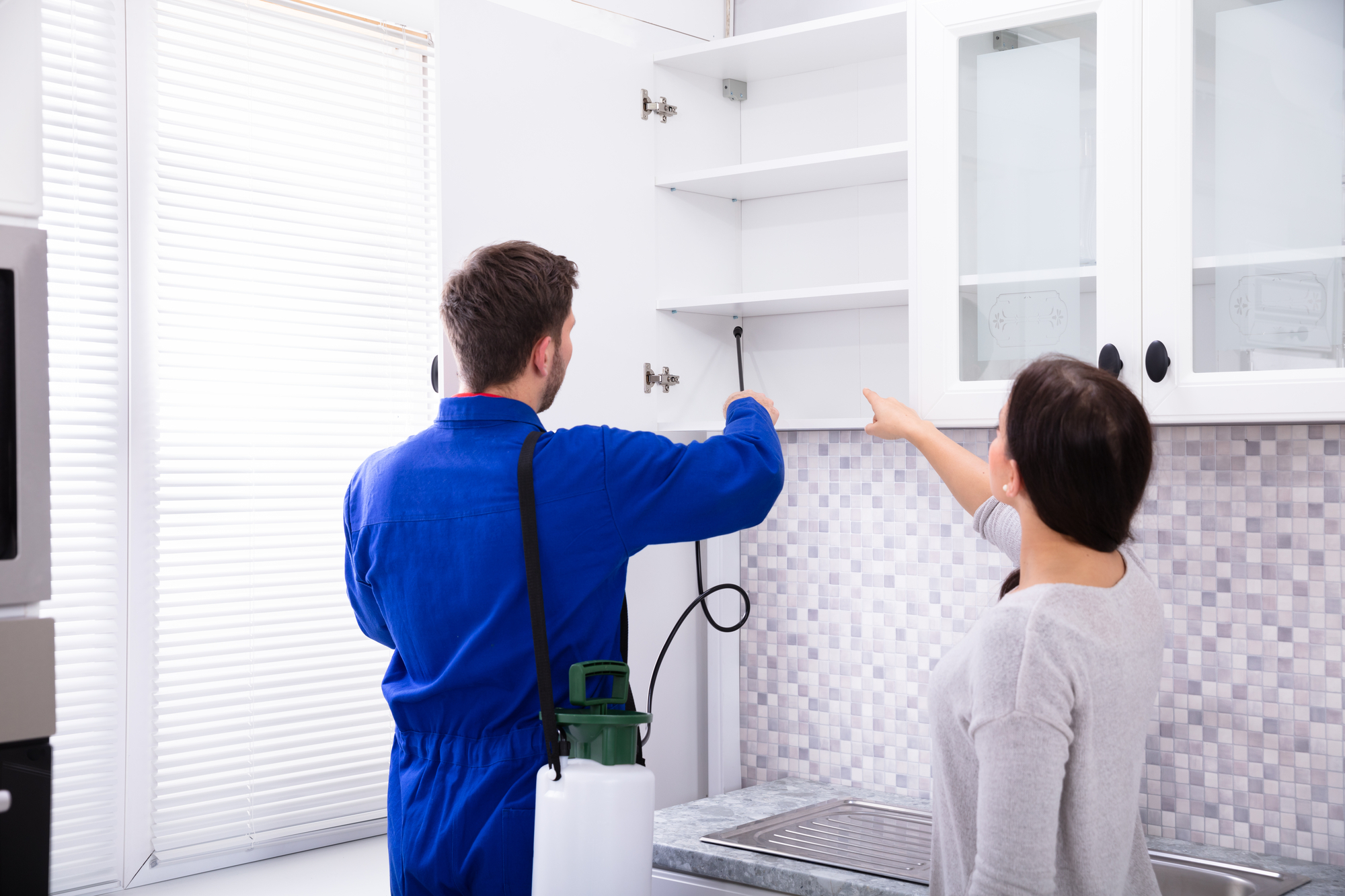 How Pest Control Protects Your Family and Home